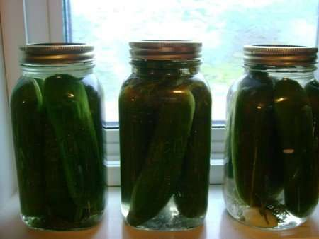 Pickle Pickers are Employees under the FLSA